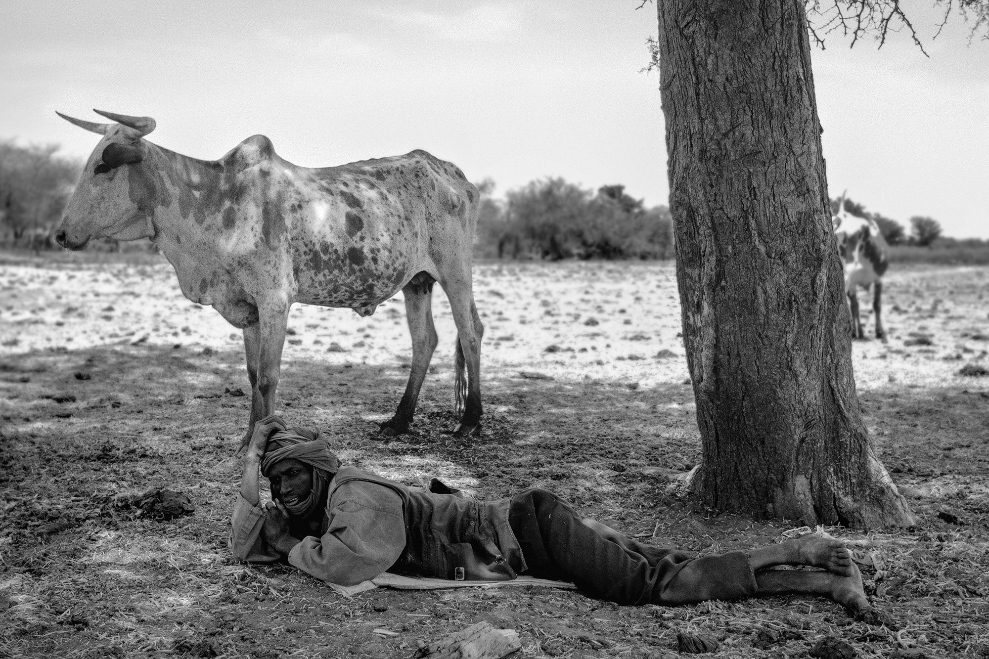 Nomad cattle herder near Oursi, Burkina Faso