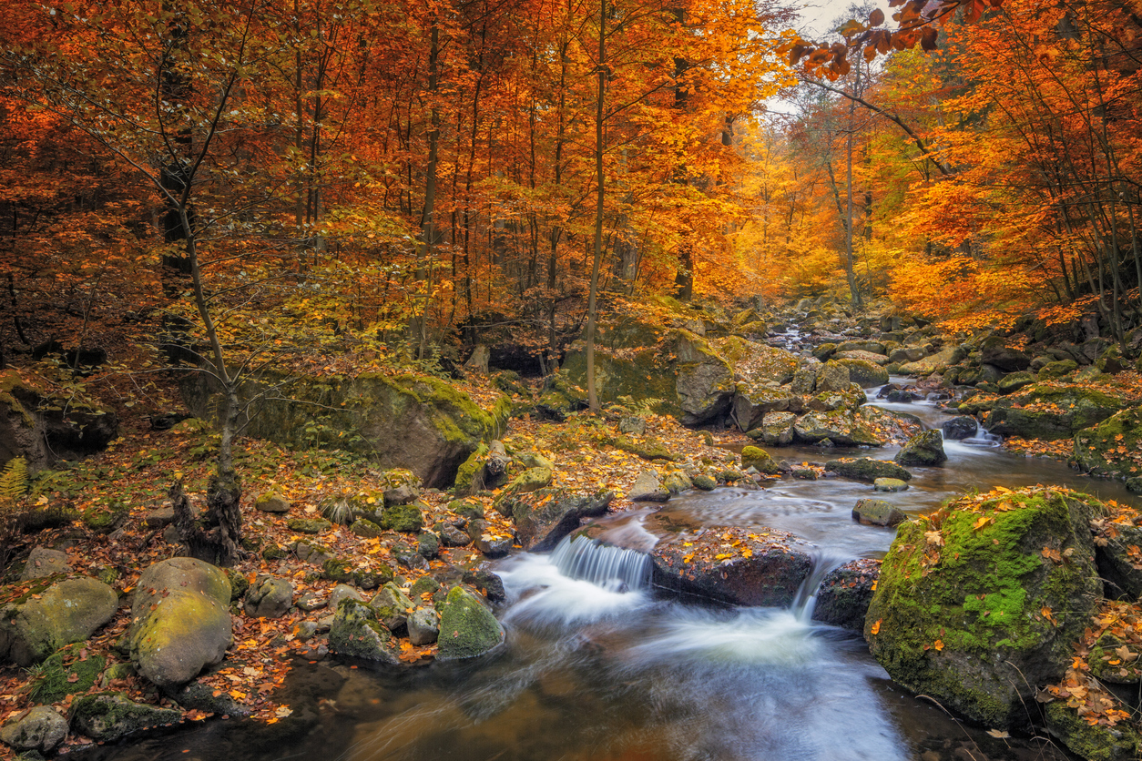 35 Beautiful Fall Photos And Time Lapse Video